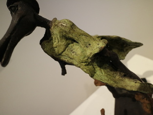 crocoavec chien